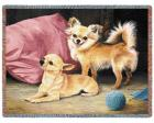 Chihuahua Throw Blanket (Woven/Tapestry)