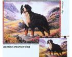 Bernese Mountain Dog Throw Blanket (Woven/Tapestry)