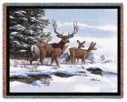 Mule Deer Throw Blanket (Woven/Tapestry)