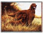 Irish Setter Throw Blanket (Woven/Tapestry)